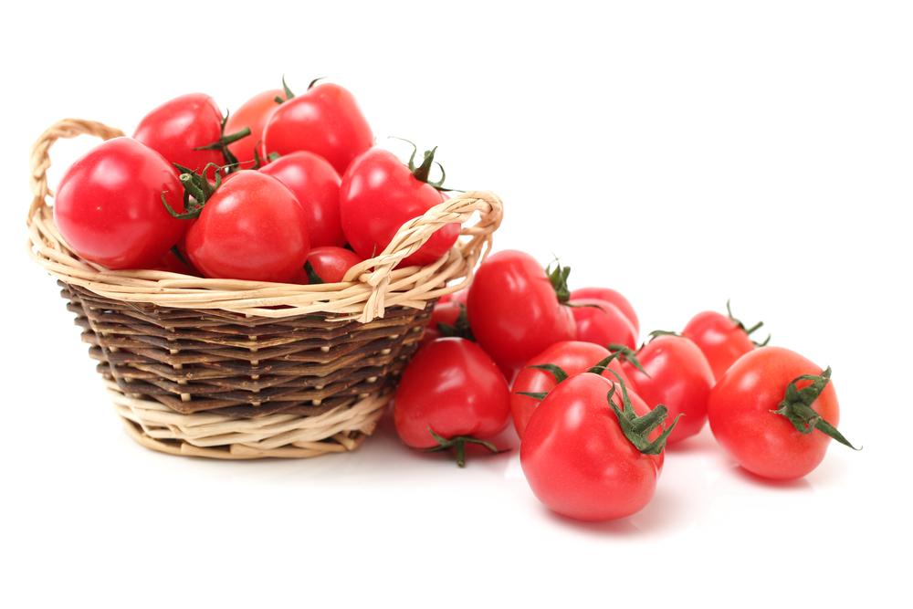 ミニトマトの収穫時期