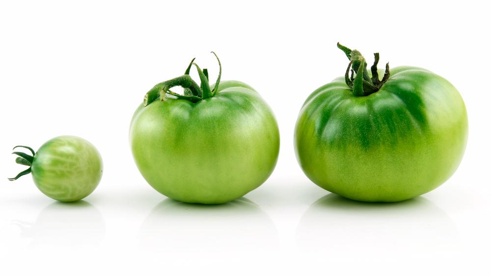 常温の青トマト