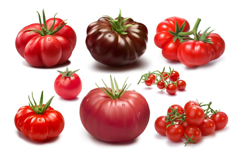 トマトの皮の柔らかい品種