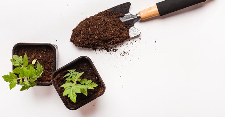 野菜苗とスコップ