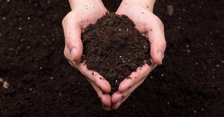 家庭菜園の土