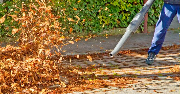ブロアーで枯葉を飛ばす