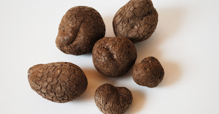 つくね芋の栽培方法