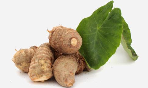 里芋(サトイモ)の育て方・栽培方法