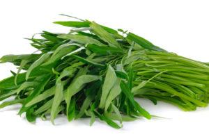空芯菜(クウシンサイ)の育て方・栽培方法