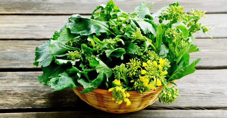 かき菜の育て方・栽培方法