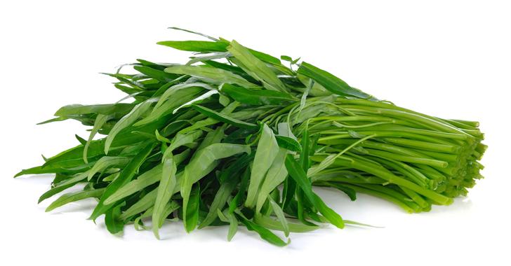 空芯菜の育て方・栽培方法