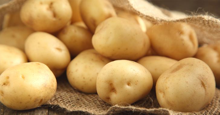 ジャガイモ(じゃがいも)の育て方・栽培方法