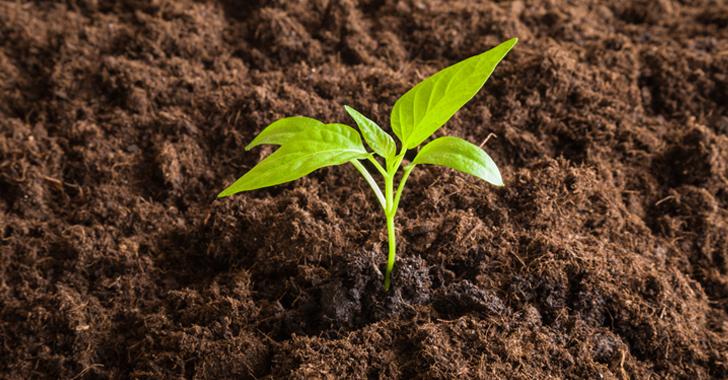 畑の土を柔らかくする方法(粘土質の土もフカフカに)|家庭菜園Q&A解決 ...
