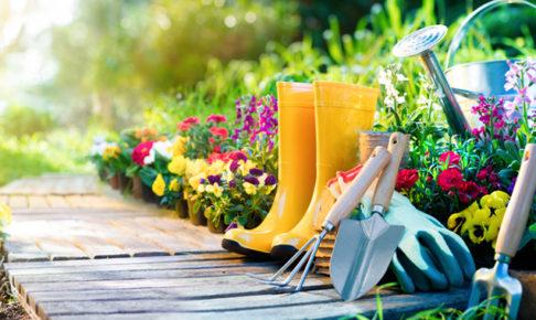 家庭菜園の道具