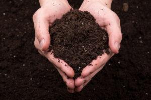 畑の土を柔らかくする方法