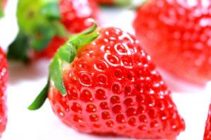 イチゴの収穫時期と収穫方法は?
