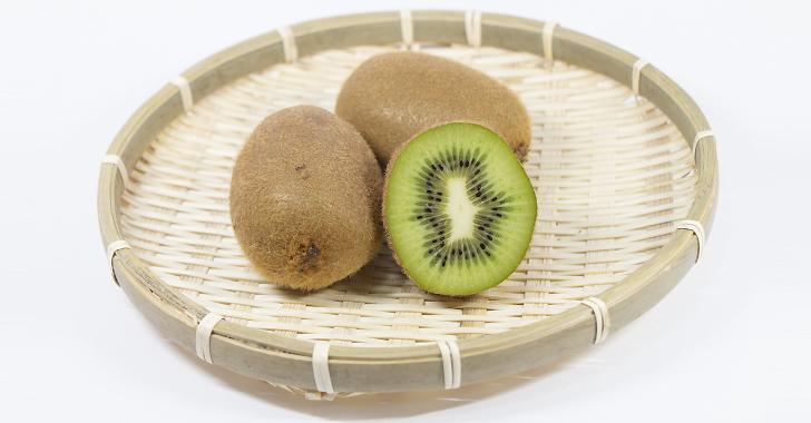 キウイフルーツの収穫方法