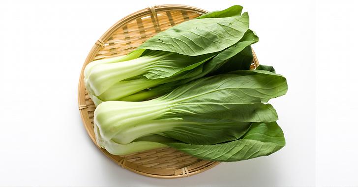 チンゲン菜の収穫方法