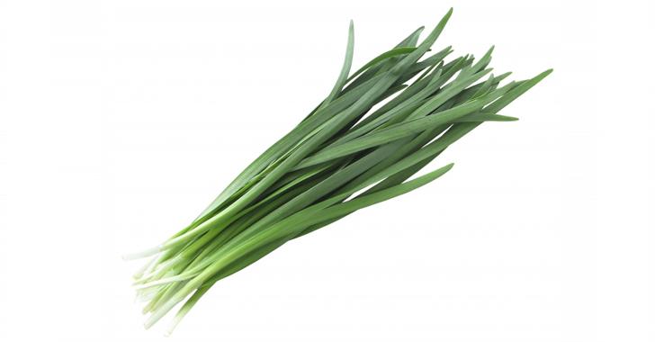 ニラの収穫方法