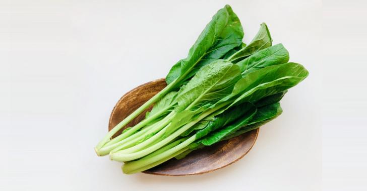小松菜の収穫時期と収穫方法は?
